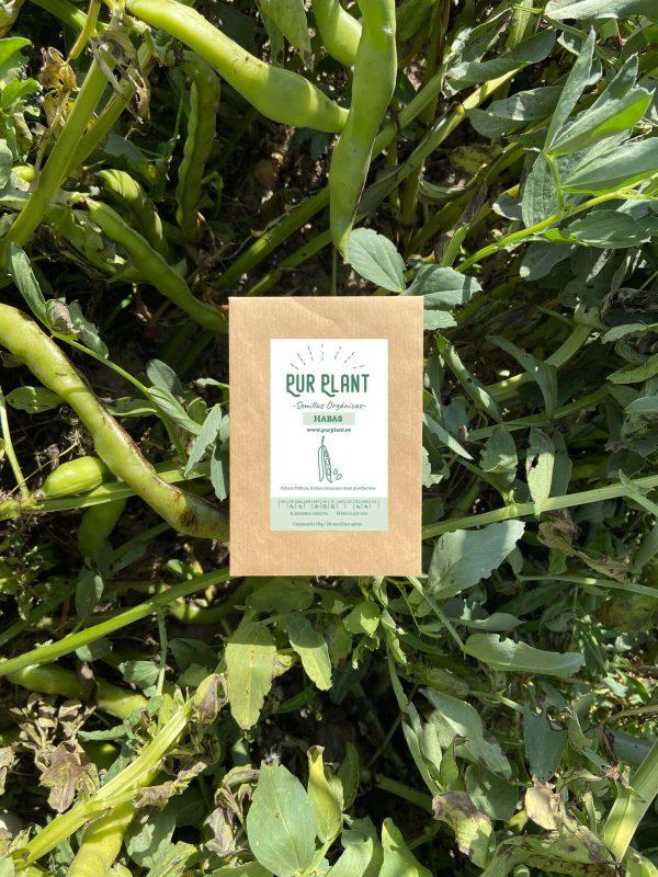 habas-semillas-orgánicas