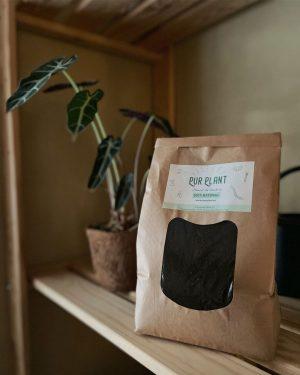 mejores abonos orgánicos para plantas