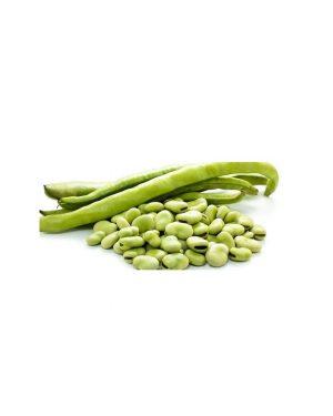 semillas-ecologicas-habas