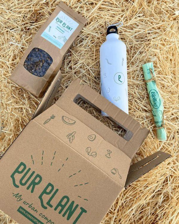 purplantbox-paja