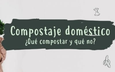 Compostaje doméstico. Qué compostar y qué no