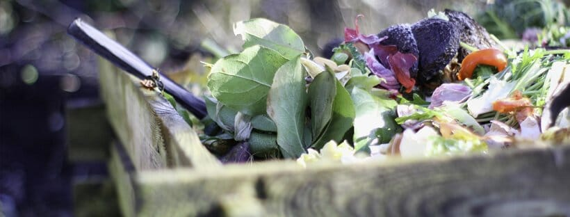 vermicompostaje-compost