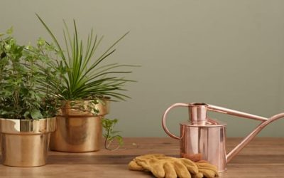 7 Consejos para ahorrar agua en tu huerto y jardín urbano