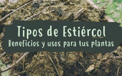 Tipos de estiércol – Beneficios y usos para tus plantas y huerto urbano