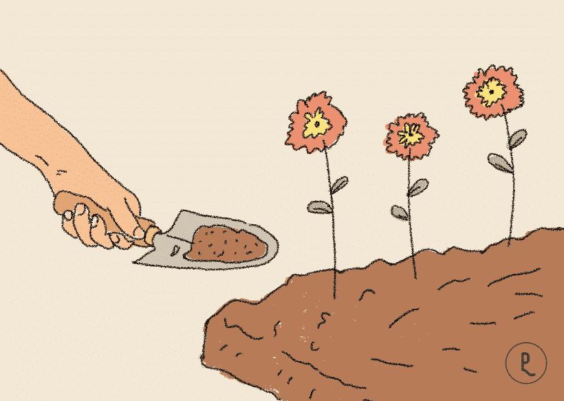 drenar la tierra
