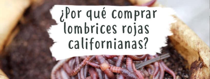 comprar-lombrices-rojas-californianas