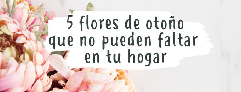 5-flores-otono-que-no-pueden-faltar-en-tu-hogar