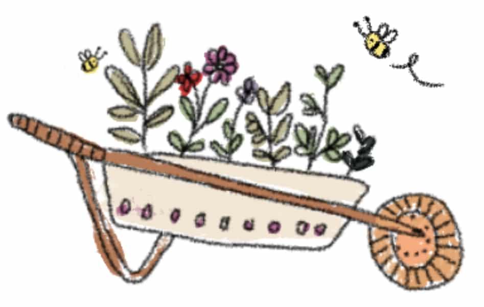 carretilla-purplant