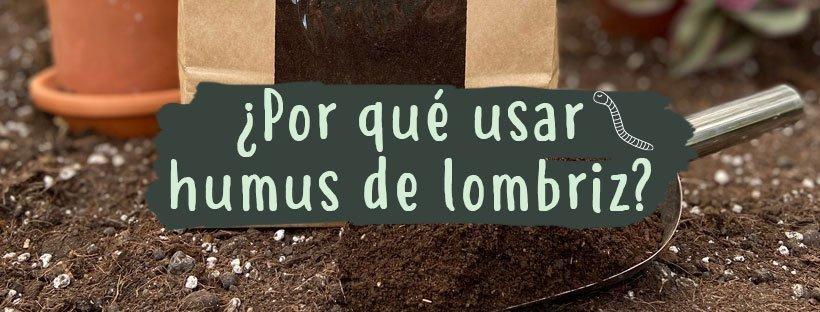 por-que-usar-humus-de-lombriz-solido