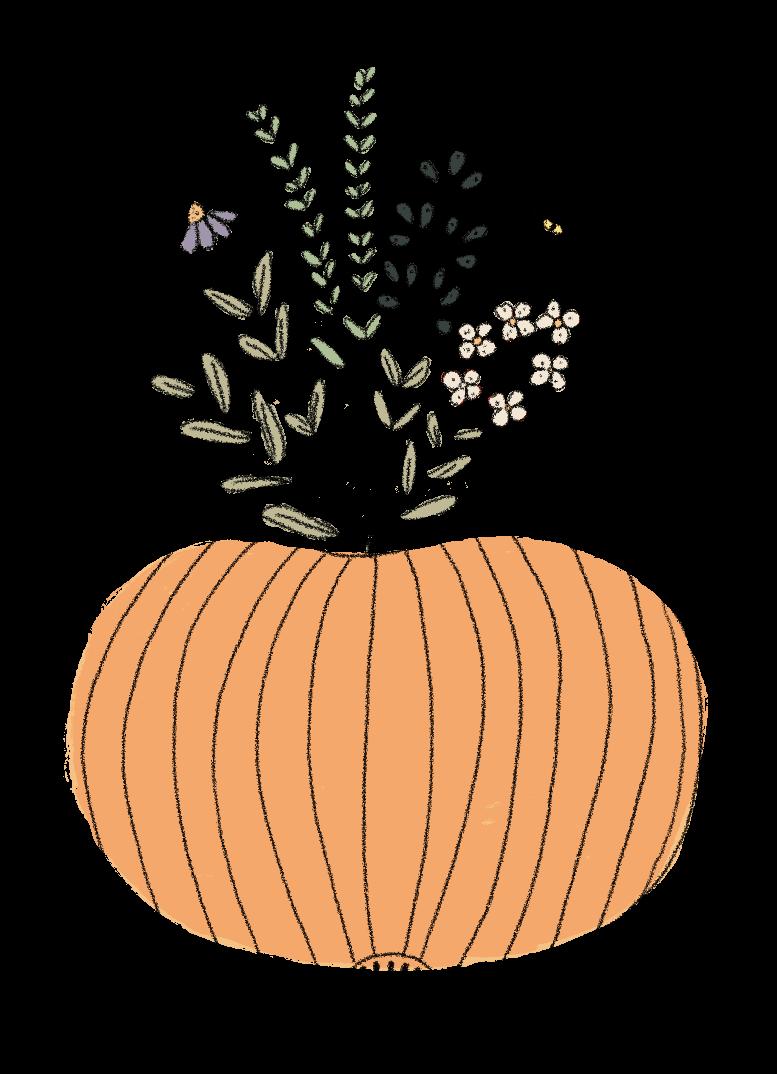 Pumpkin_planter