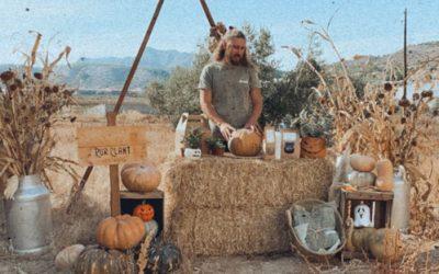 ¿Cómo hacer maceteros de calabazas para halloween? – Pumpkin Planters