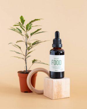 plant-food-comida-plantas-interior