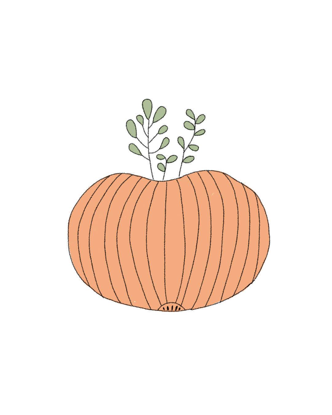 Semillas Orgánicas – Calabaza Halloween