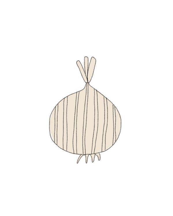 semillas-cebolla-lisboa-purplant