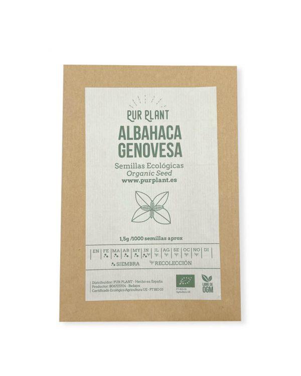 semillas-ecologicas-albahaca-genovesa