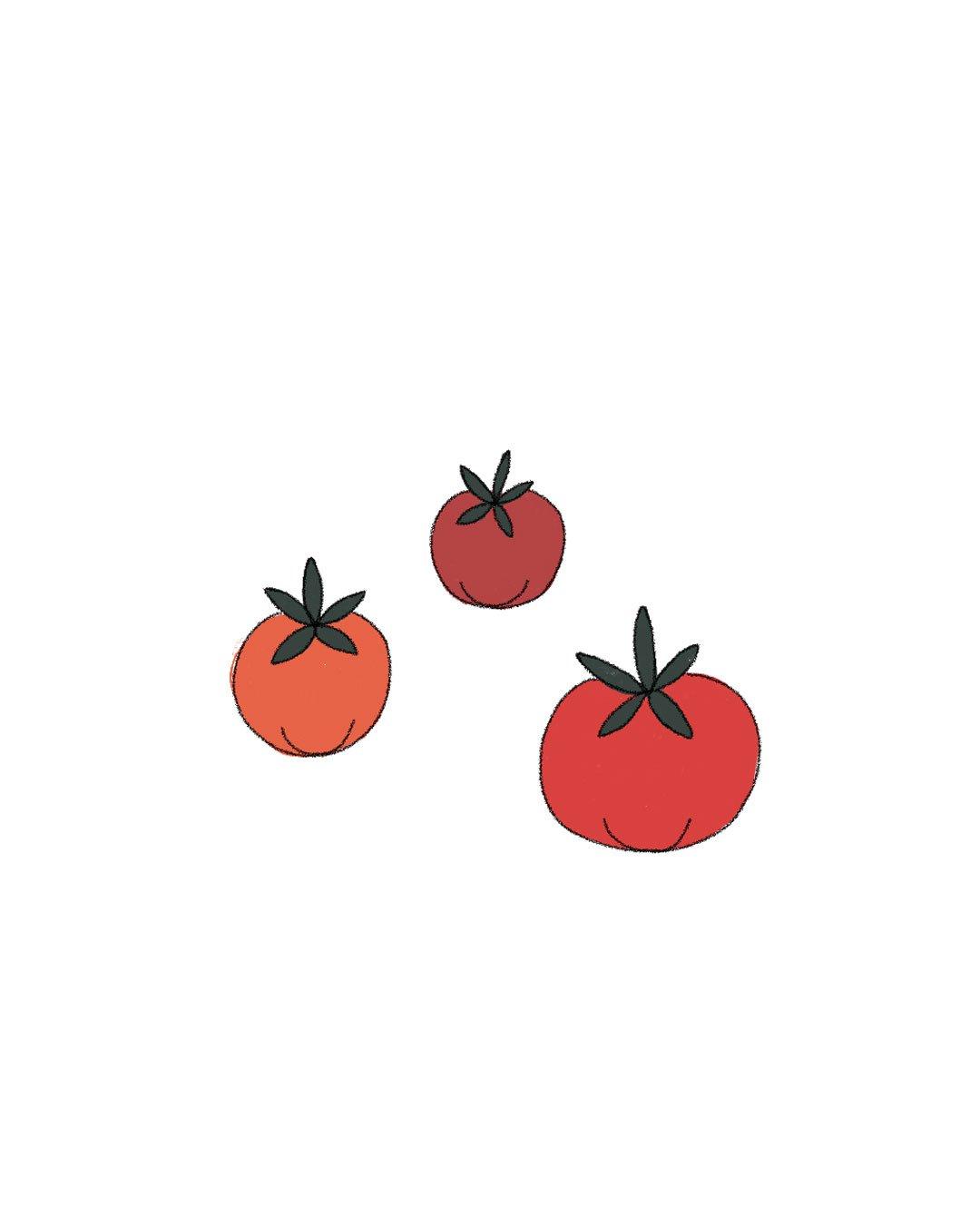 Semillas Orgánicas – Tomate Cherry