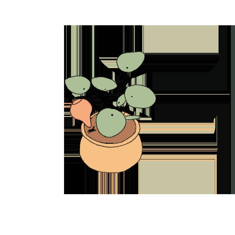 autorriego-plantar