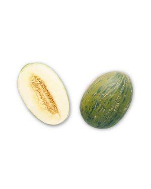 Semillas Orgánicas - Melón del Pinyonet