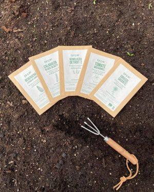 semillas-organicas-plantar-primavera
