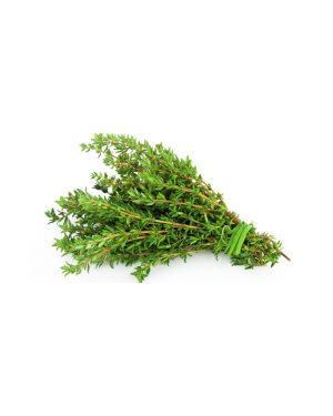 semillas-tomillo-eco-purplant