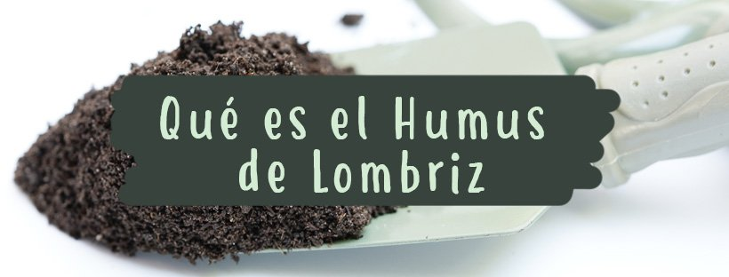 que-es-el-humus-de-lomrbiz