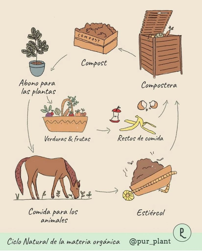 ciclo-natural-materia-organic