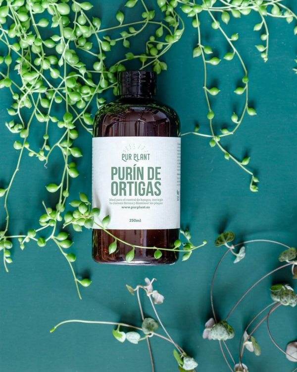 purin-ortigas-plantas