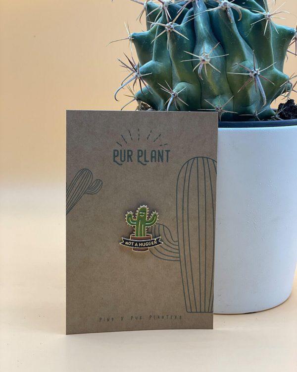 pin-cactus-verde