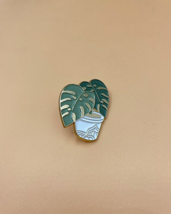 pin-monstera-blanco-planta