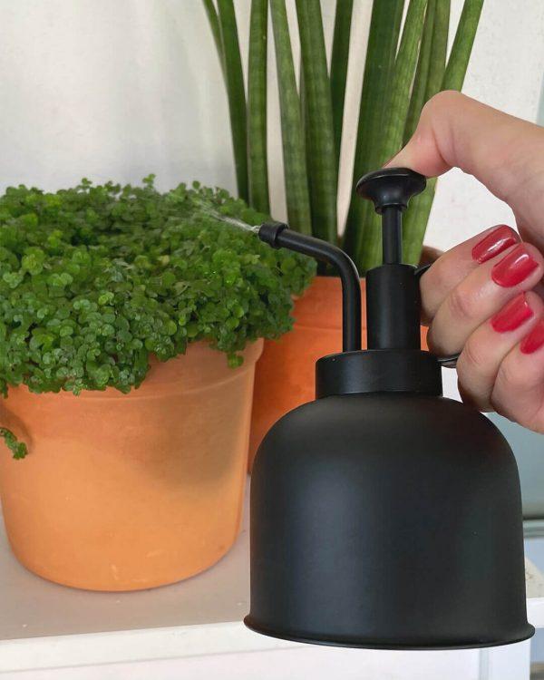 pulverizando-plantas