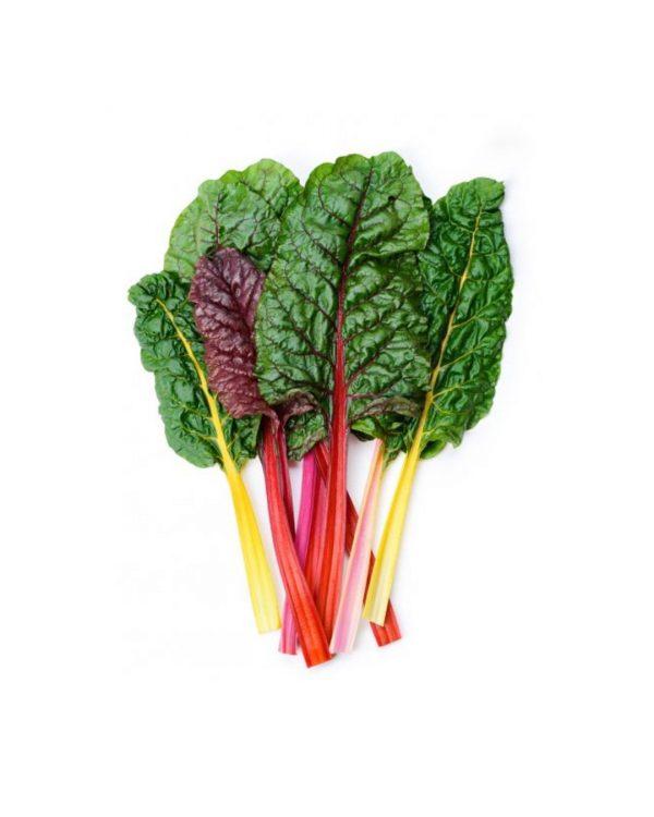 semillas-acelga-multicolor-verdura