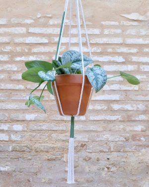 colgante-macrame-plantas-verdeoscuro