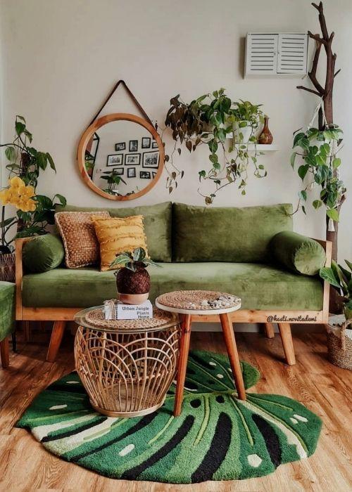 Plantas_ Philodendron y Calatheas