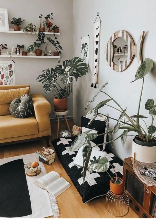 Plantas tropicales decoración casa